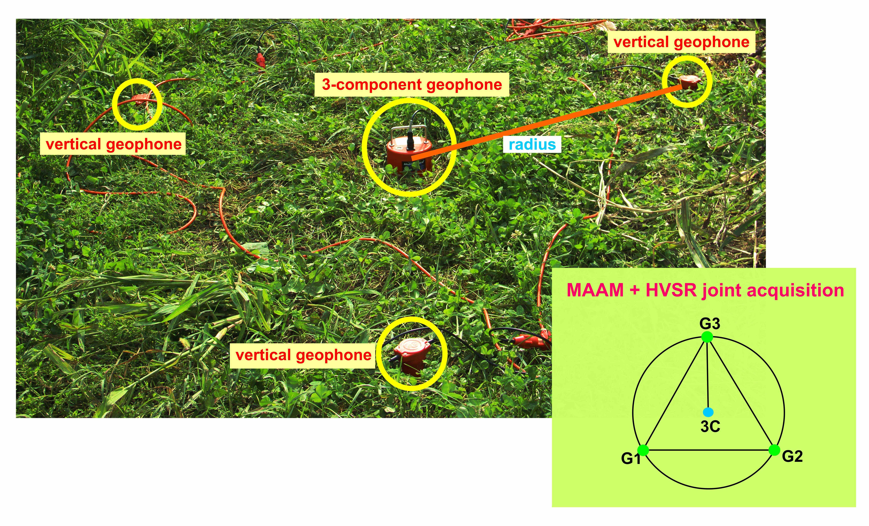 joint MAAM + HVSR acquisition