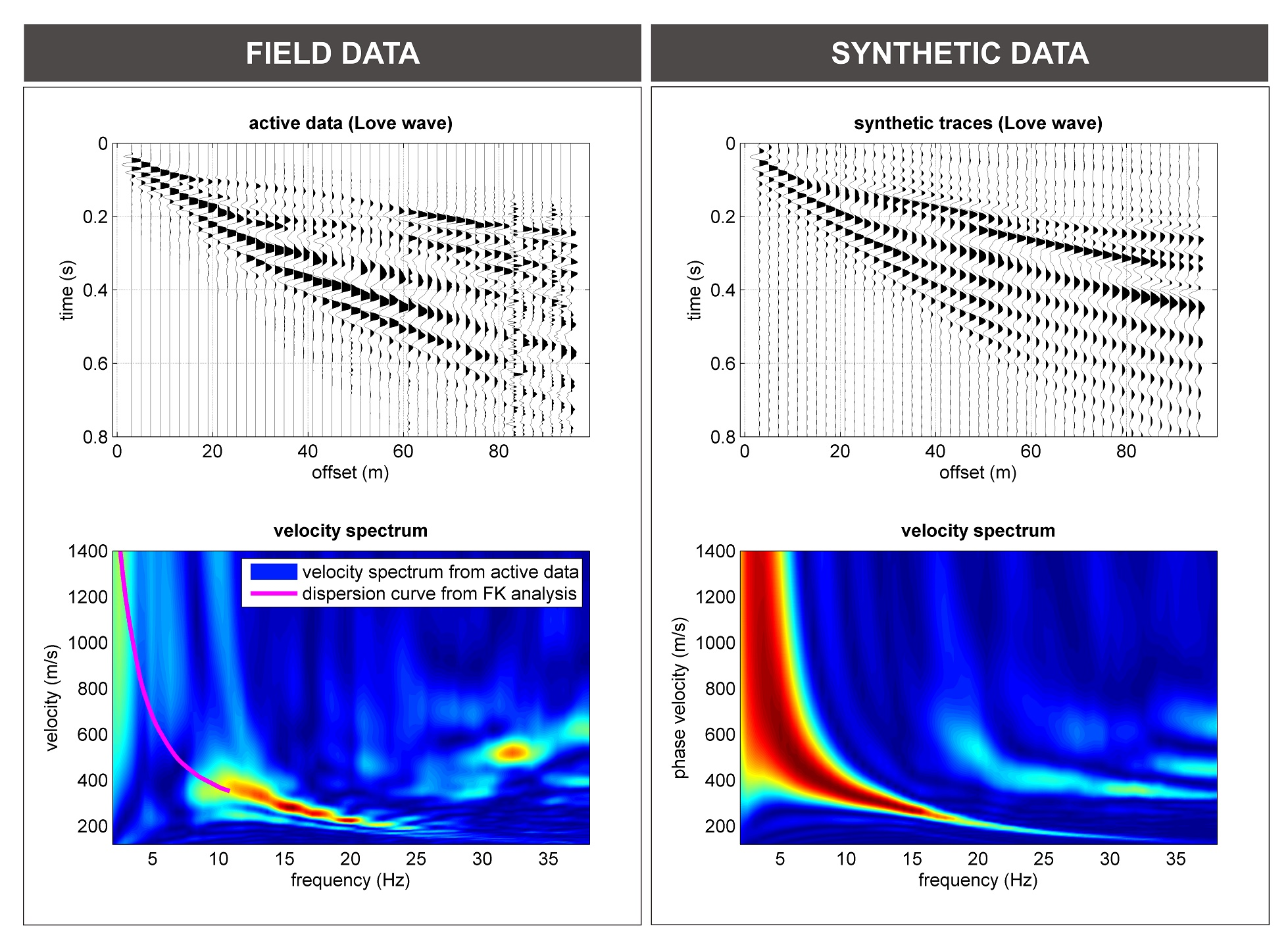 Love waves (THF): field data (on the left) and synthetic traces for FVS analysis